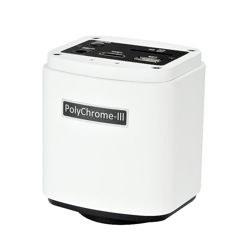 polychrome01